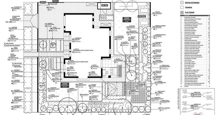 Projekt ogrodu ze schematem nasadzeń