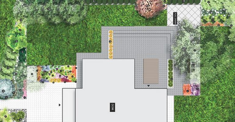 Kolorowy ogród